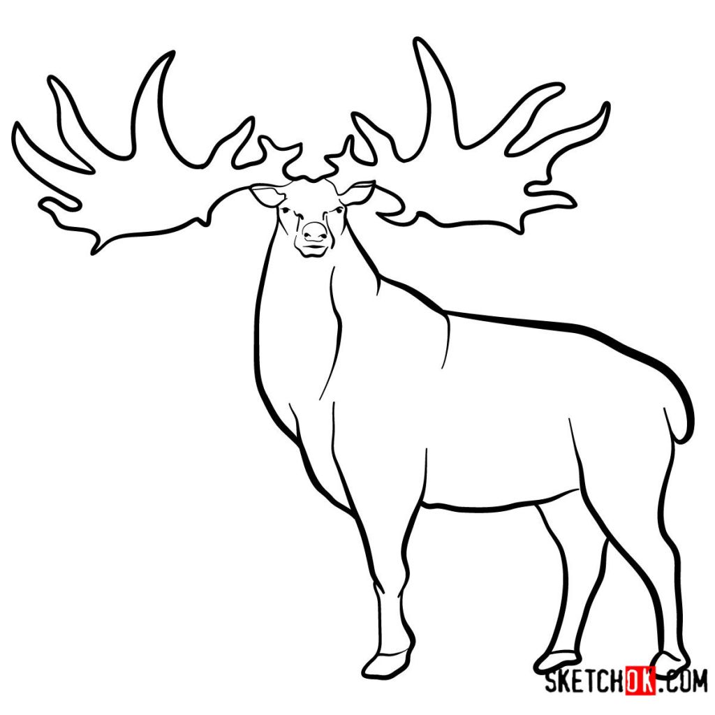 How to draw an Irish elk