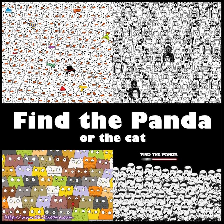 Find the Panda