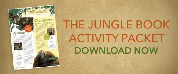The Jungle Book Activity Packet