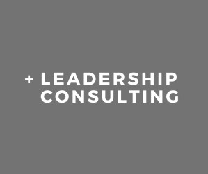 Skidmore Consulting - Leadership Consulting