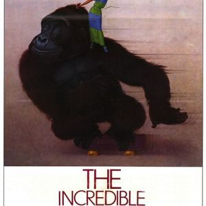 "285. The Incredible Shrinking Woman (1981) — A Torture Cinema ""Adventure"""