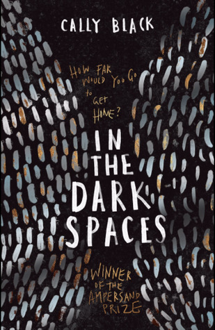 Book Review: In the Dark Spaces by Cally Black