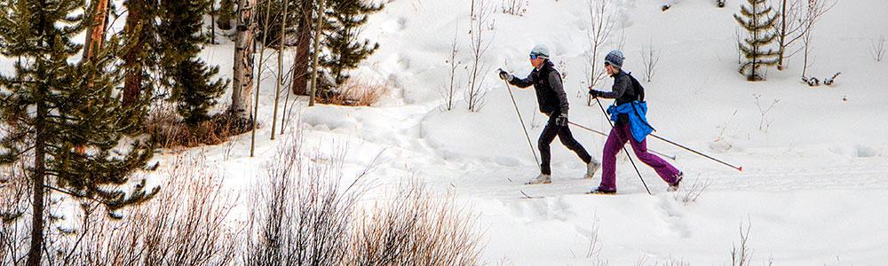 XC BC Ski Report Summary 2020-2021