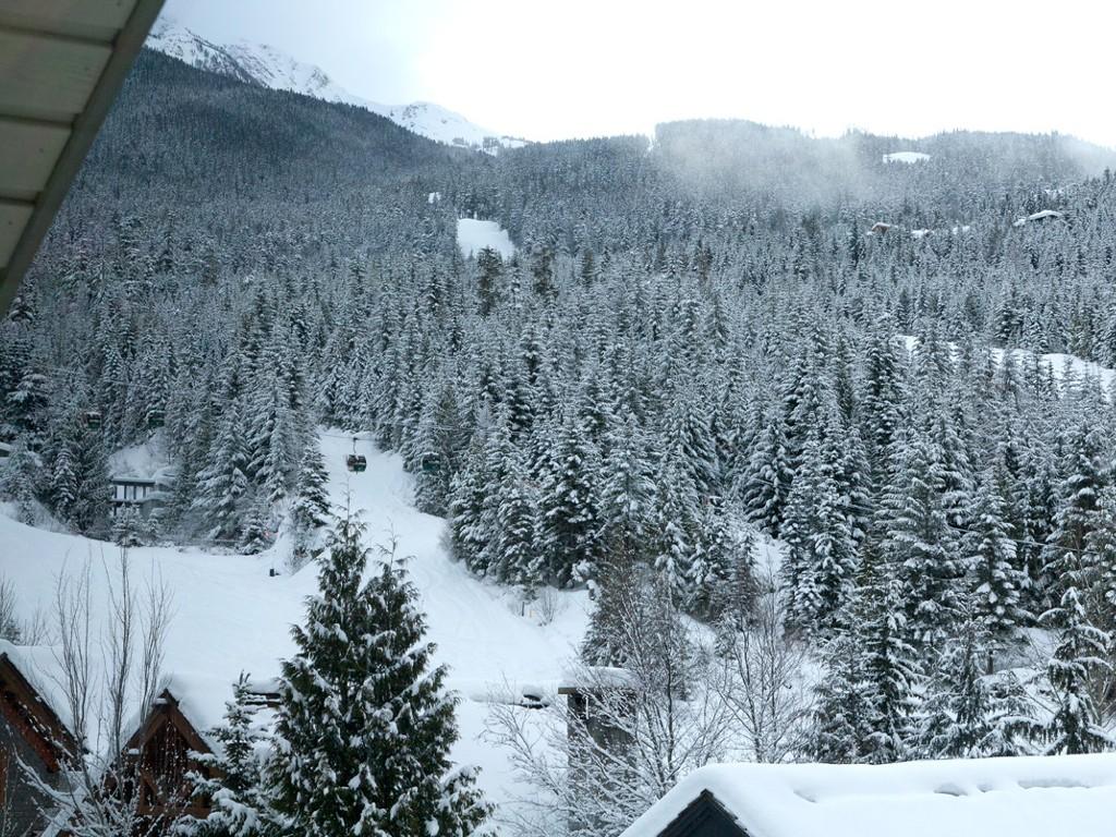 5 Bedroom Snowridge Whistler Ski In Ski Out (19)