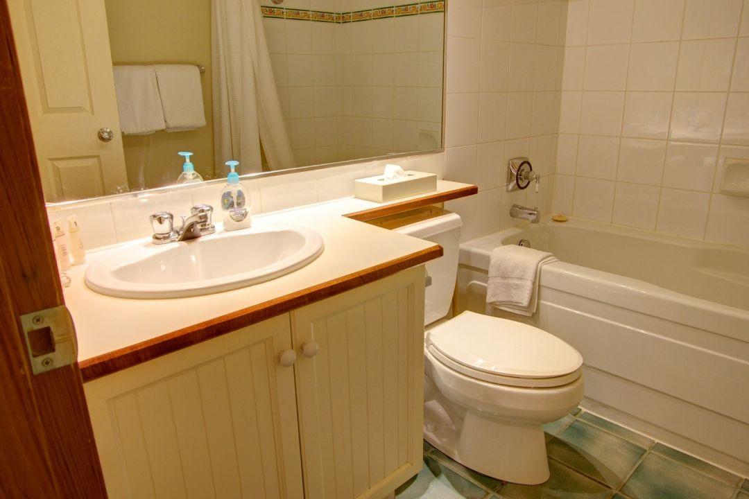 Aspens 1 Bedroom Unit 110 BATH