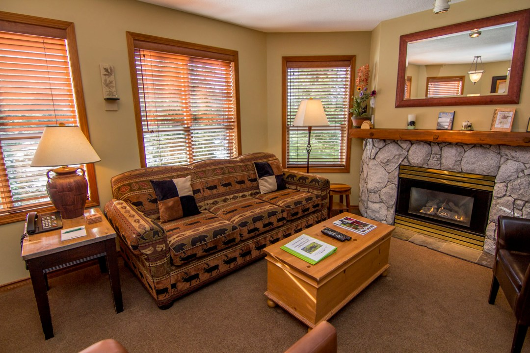 Aspens 1 Bedroom Unit 209 LR3
