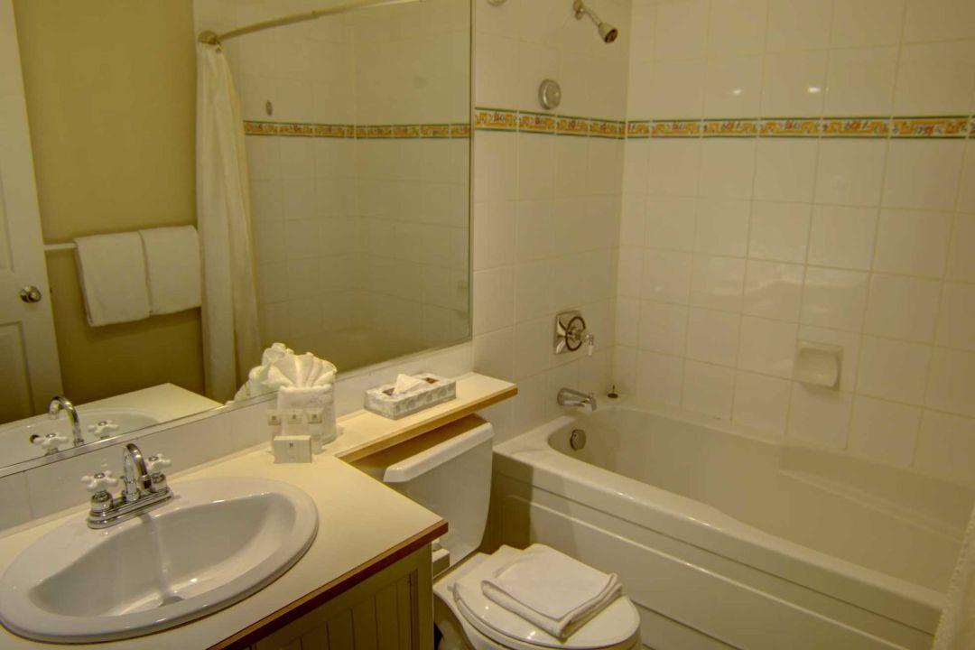 Aspens 1 Bedroom Unit 215 BATH