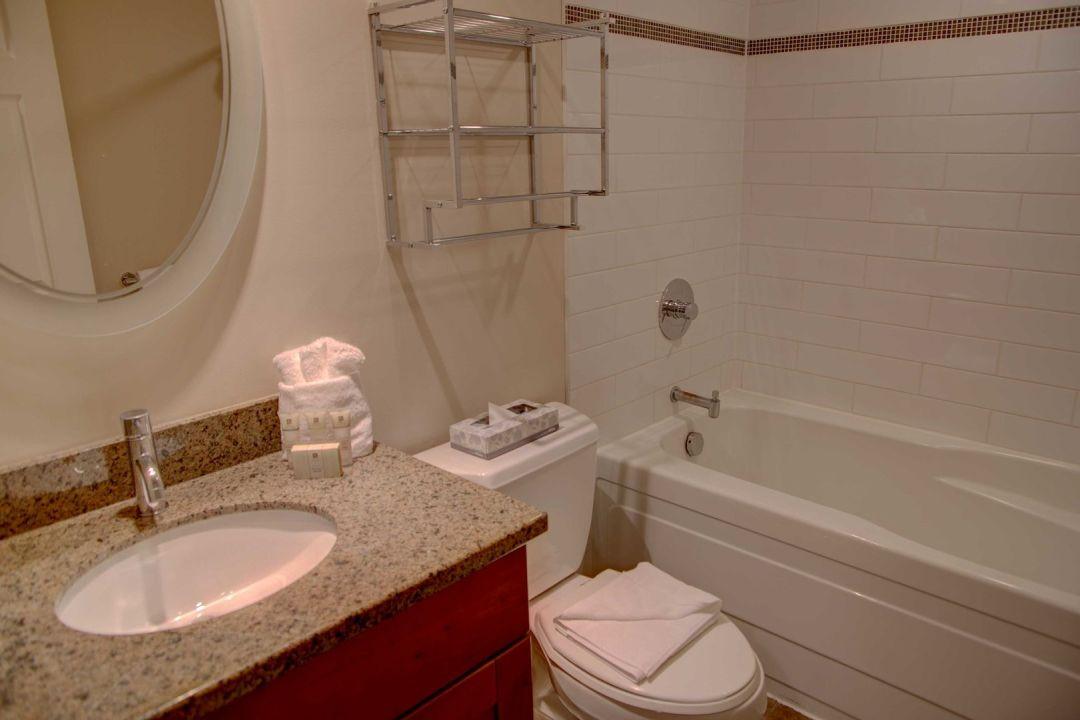 Aspens 1 Bedroom Unit 414 BATH