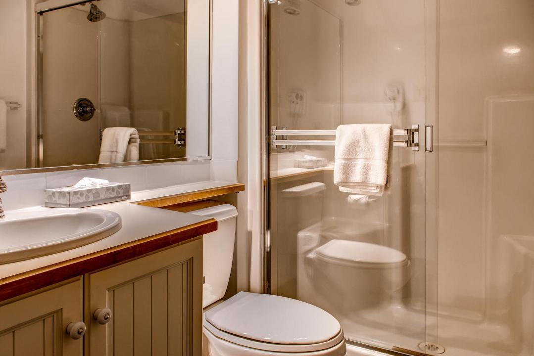 Aspens 1 Bedroom Unit 464 BATH2