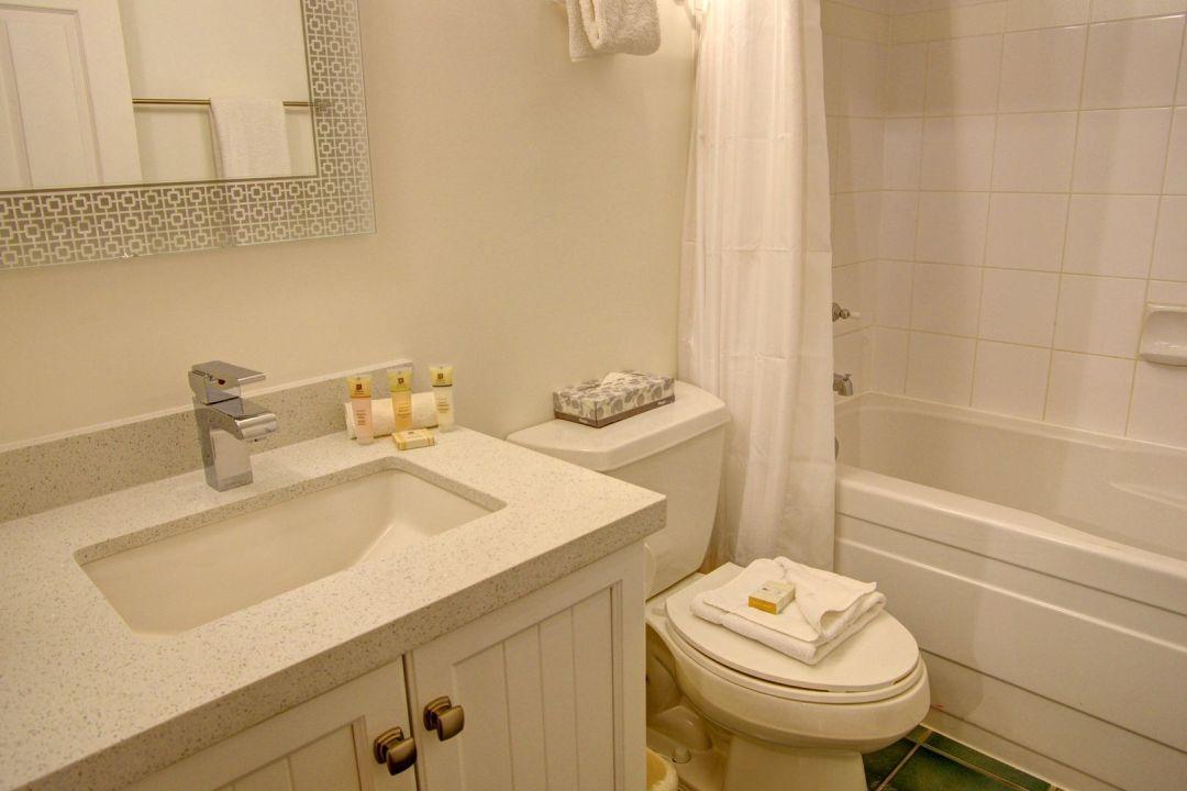 Aspens 1 Bedroom Unit 335 BATH
