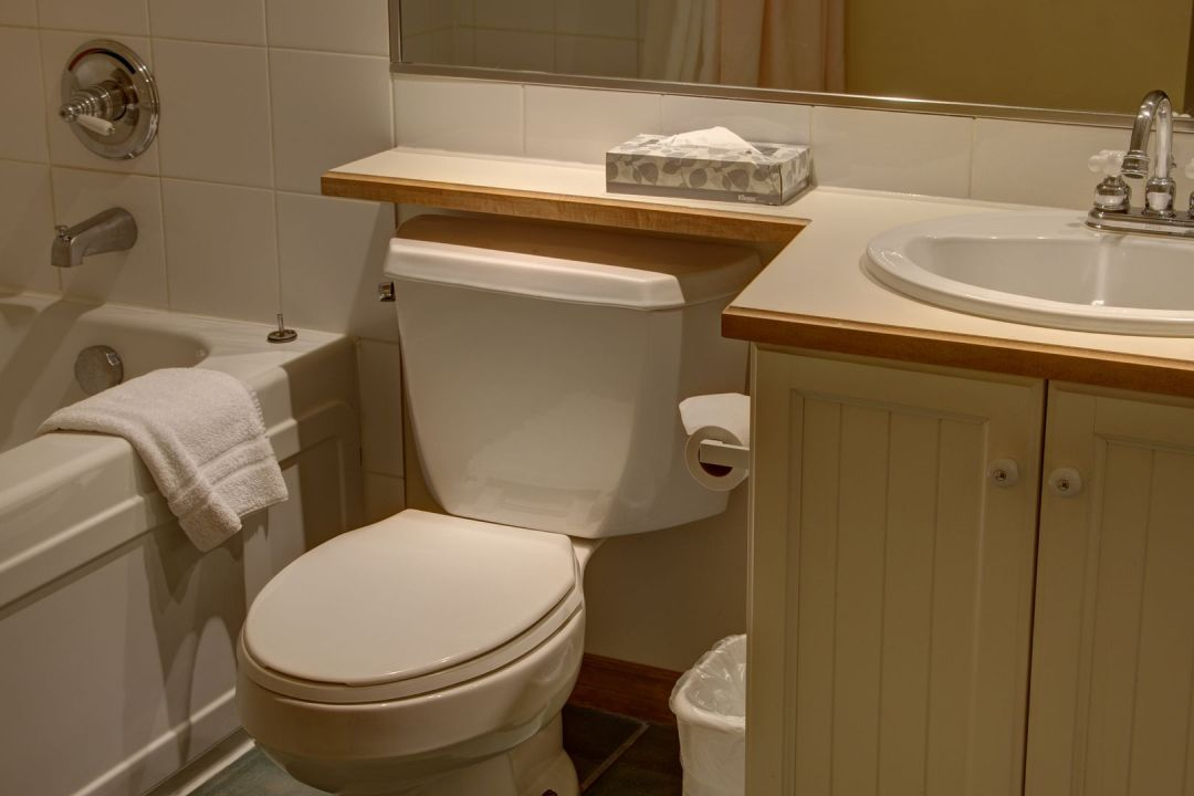 Aspens 2 Bedroom Unit 460 BATH