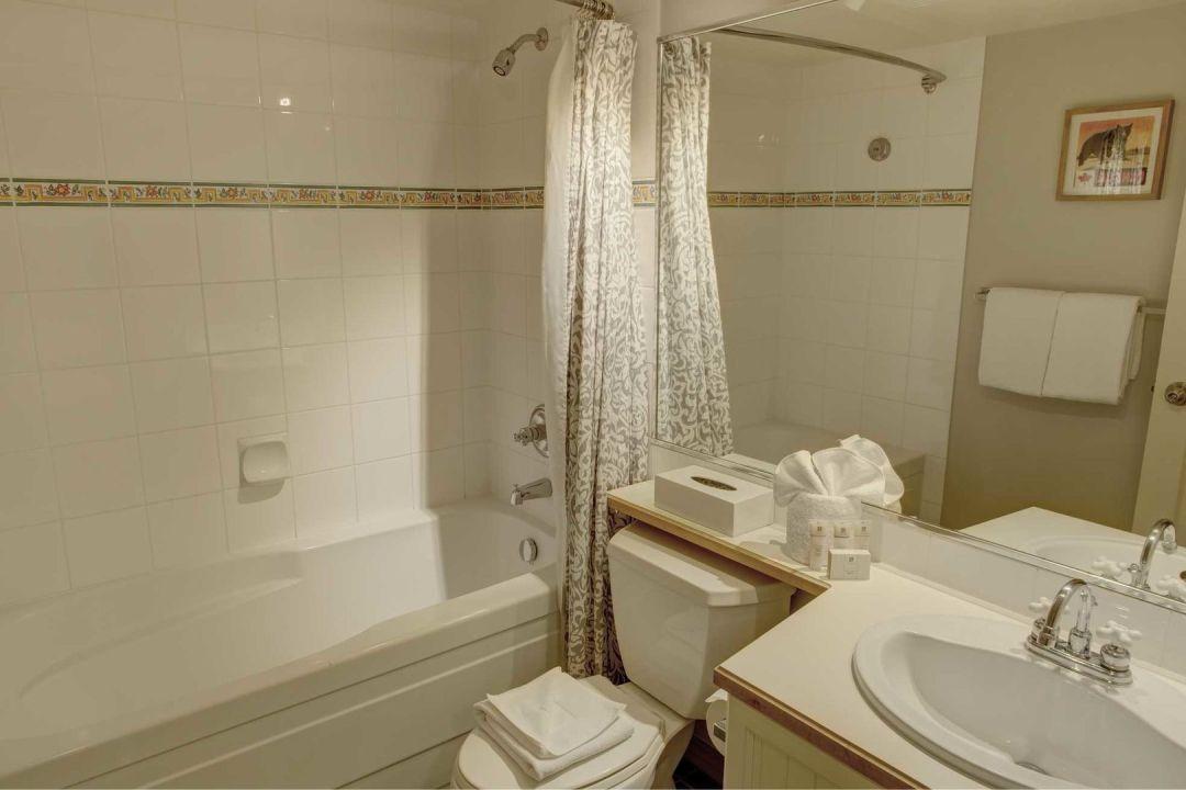 Aspens 1 Bedroom Unit 545 BATH