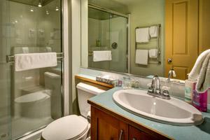 Blackcomb Spring Suites Ski In Ski Out Hotel (11)