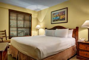 Blackcomb Spring Suites Ski In Ski Out Hotel (8)