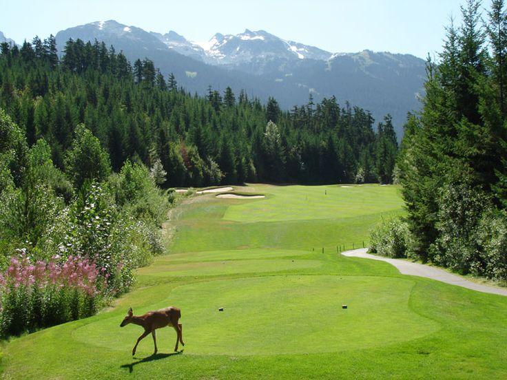 Fairmont Chateau Whistler Golf Course (9)