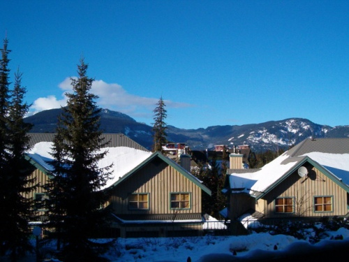 Forest Trails 2 Bedroom Unit #24 VIEW