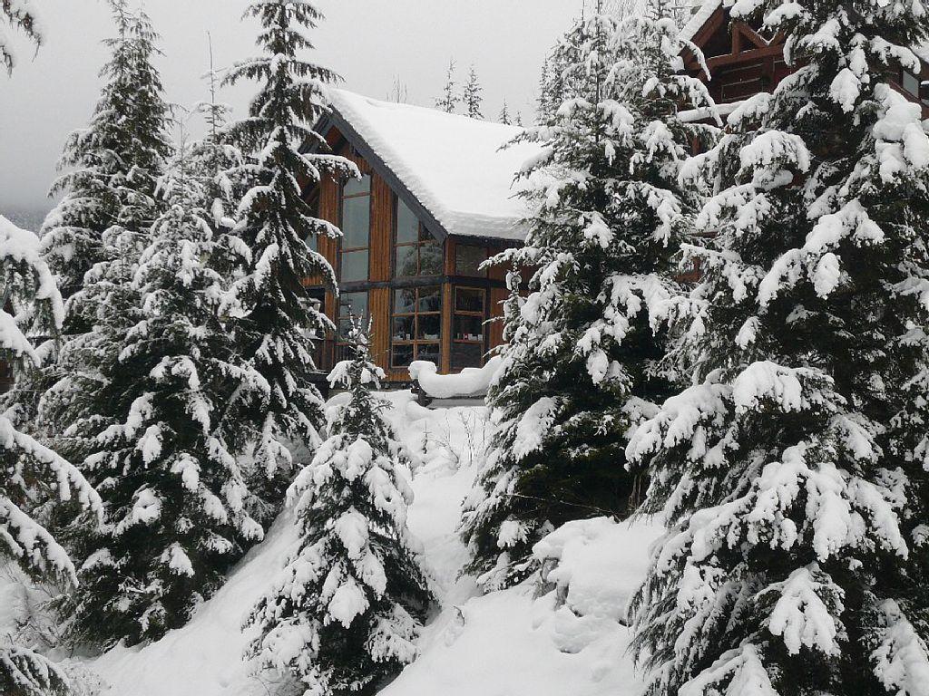Whistler Luxury Ski In Ski Out Rental Home (7)
