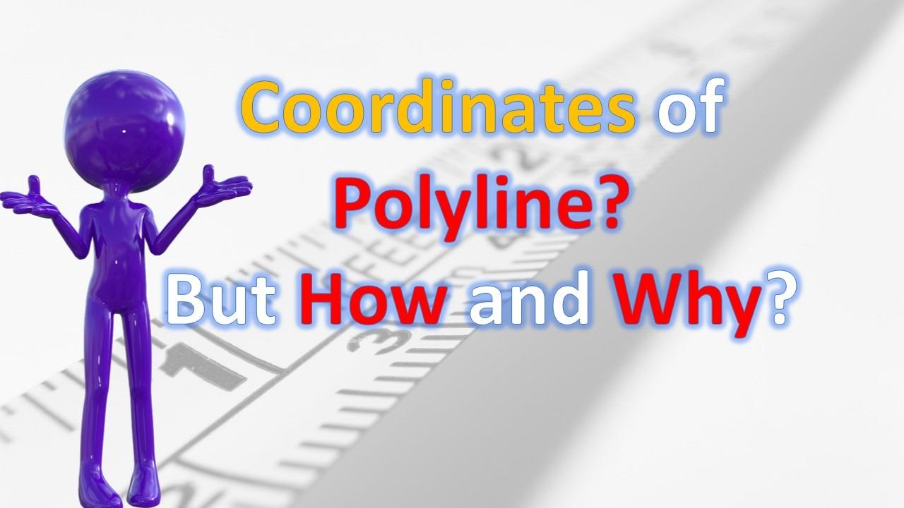 Export coordinates of polyline