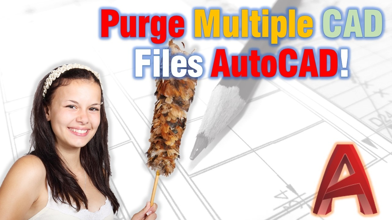 Purge multiple Cad Drawings