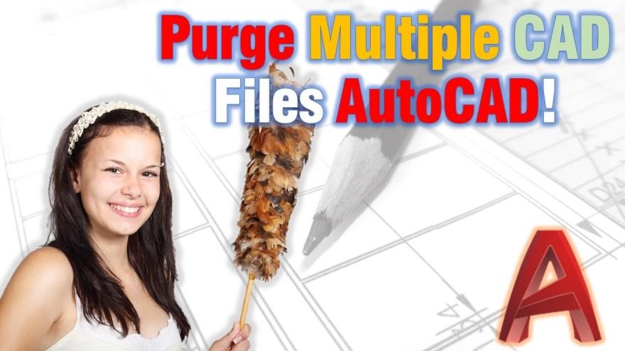 Purge multiple Cad Drawings