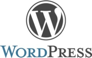 WordPress Gründer Matt Mullenweg schenkt WordPress der Welt in 2003