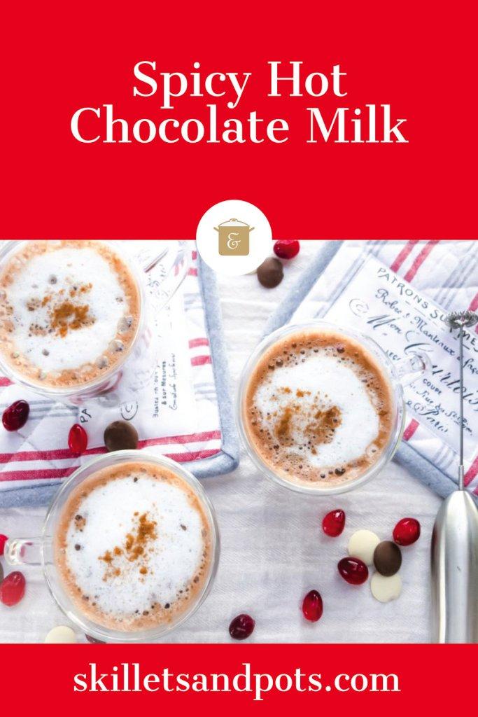 Spicy Hot Chocolate Milk