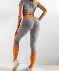 YD200058 OG2 2 Maldonado Scintillating Crop Top Seamless High Waist Pants Women's Activewear