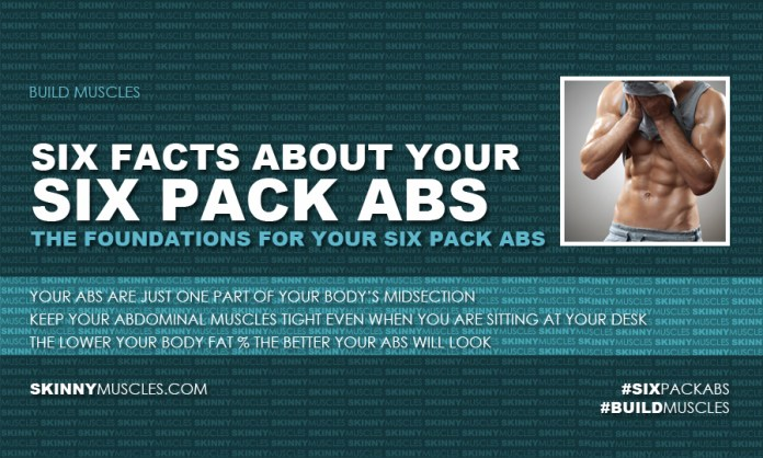 Six facts about your six pack abs