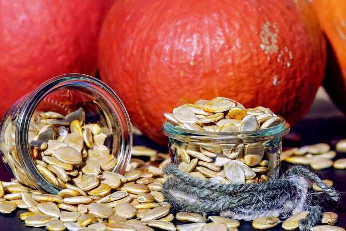 pumpkin seeds, source of protein for vegans