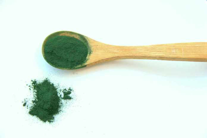 spirulina, vegetarian protein sources