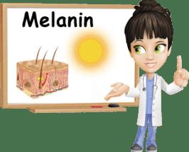 Melanin-properties