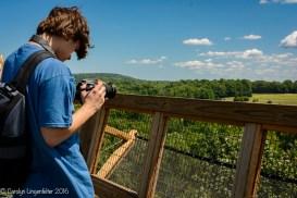 Capturing a landscape