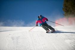 Director of Pro Ski Training