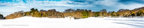 boston_emerald_necklace-franklin_park_dsc4389-pano