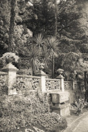 Villa Cipressi