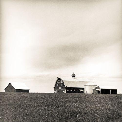 Neat Farm - © Skip Smith