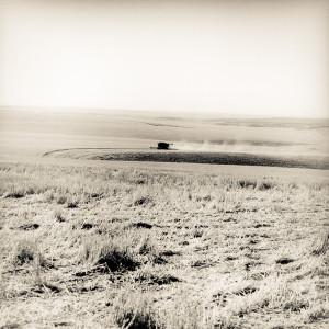 Wheat Harvest, Moore Family Farm - © Skip Smith