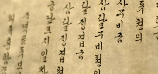 Why Did I Study The Korean Language   Skip The Flip