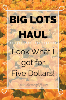 Watch this 5 minute video to see what I found for just $5 at Big Lots!