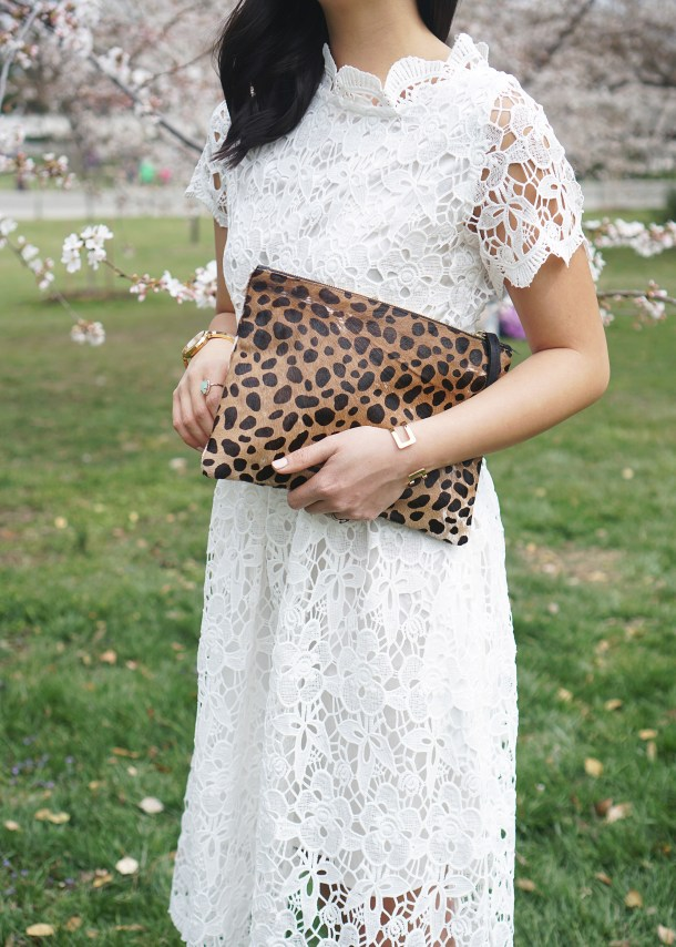 Skirt The Rules / Leopard & Lace