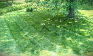 lawn-landscaping-Kansas-City-Overland-Park-landscape-design