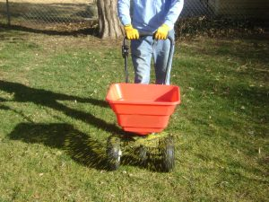 Prairie Village, Lawn, Landscape, SK Lawn Care, Lawn Care, Mowing, Fertilizer, Weed Control, Seeding