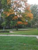 Overland-Park-lawn-care-leaf-removal-fall-seeding-aerating