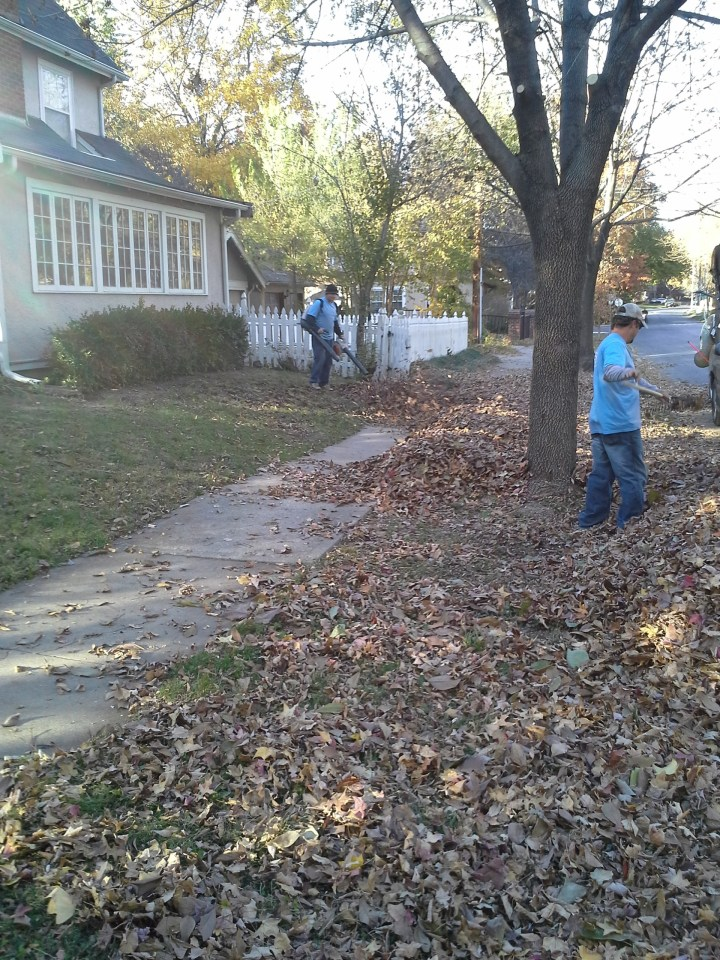 leaf-removal-Kansas-City-Overland-Park-Leawood