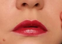 Dior Rouge 977 Pied-de-Poule swatches lips