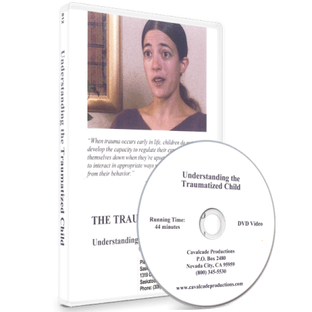 The Traumatized Child: Understanding the Traumatized Child