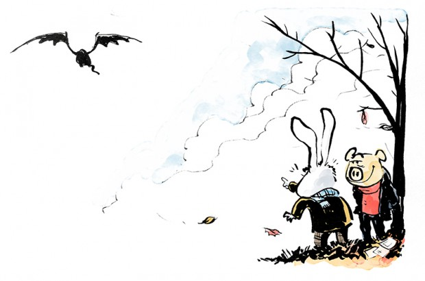 kort efteraar skræntskov drage illustration