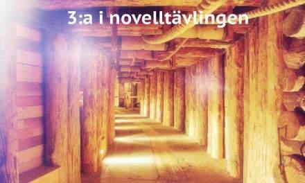 Sanning eller sägen – 3:a i novelltävlingen 2017