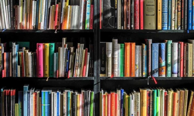 Gestalta en person genom innehållet i hens bokhylla – skrivövning
