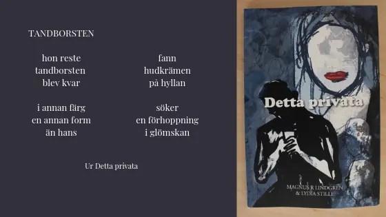 Detta privata av Magnus R Lindgren & Lydia Stille